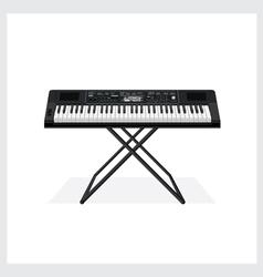 Keyboard instrument vector image vector image