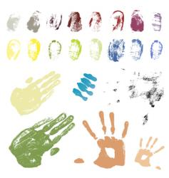hand and fingers vector image
