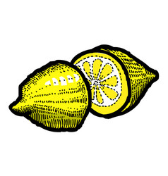 cartoon image of lemon icon fruit symbol vector image vector image
