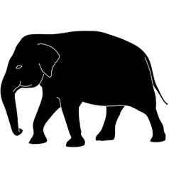 elephant silhouette with white outlines vector image
