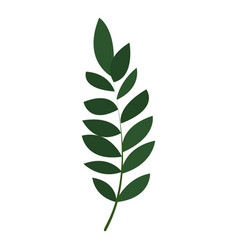 exotic botany leaf icon cartoon style vector image