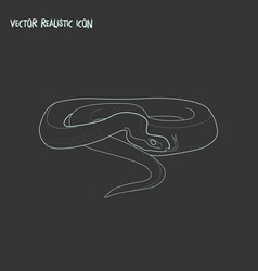 snake icon line element of vector image