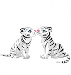 two white tigers in love vector image