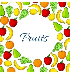 Fruit round poster garden and exotic fruits vector image vector image