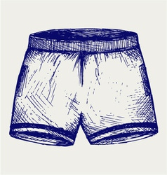 Swimming trunks vector image