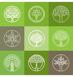 tree logo set vector image vector image
