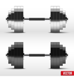 Black and silver classic power dumbbells vector