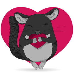 chinchilla pet colored isolated on vector image