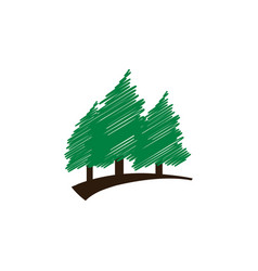 Elegant scribble green pine trees template vector