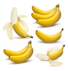 set 3d realistic bananas vector image