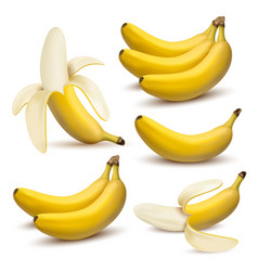 set of 3d realistic bananas vector image