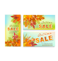 set with seasonal discounts autumn leaves sale vector image