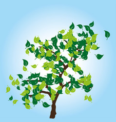 tree with green leaves on blue background vector image