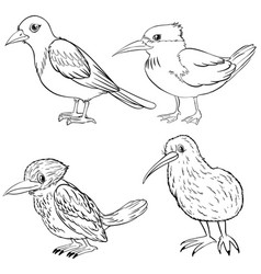 animal outline for four kinds of birds vector image vector image