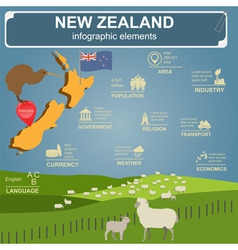 New Zealand infographics statistical data sights vector image vector image