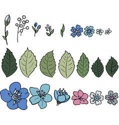 A set of multicolored wildflowers vector