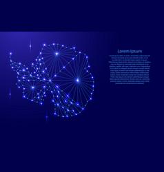 Antarctica map of polygonal mosaic lines network vector