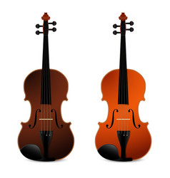 classical acoustic violins on black background vector image