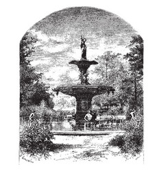 fountain purely functional vintage engraving vector image