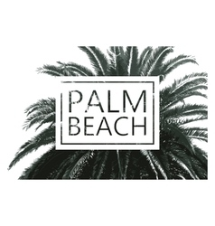 palm tree print vector image