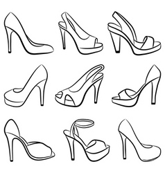 shoes vector illustration vector image