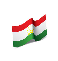 Tajikistan flag vector
