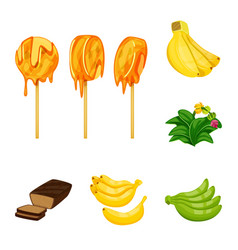 tropical and ripe symbol vector image