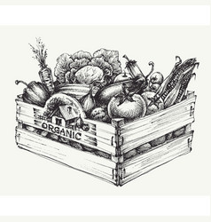 Wooden crate full of organic food isolated vector
