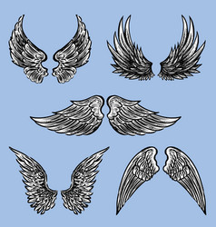 Different fictional wings vector