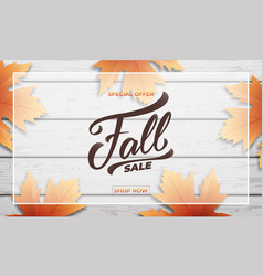 Fall sale background layout design fall lettering vector