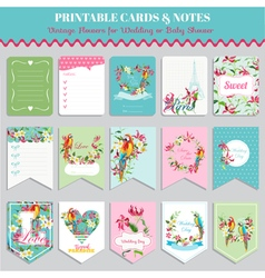 Tropical Flowers and Parrot Birds Card Set vector image
