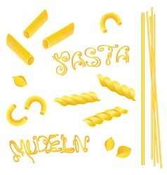Noodles pasta italian food vector