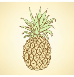 Sketch tasty pineapple in vintage style vector image