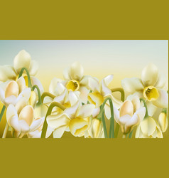 Spring meadow daffodil flowers in watercolor vector