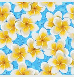 Tropical flowers plumeria vector