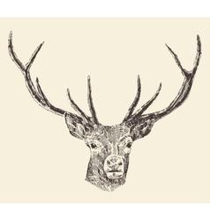 Deer Head Vintage Hand Drawn vector image vector image