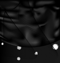 silk and gems vector image