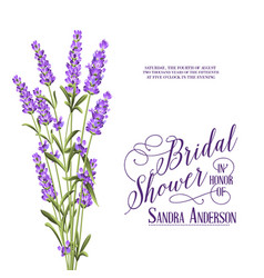 bridal shower invitation card vector image