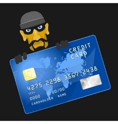Criminals hacked credit card vector