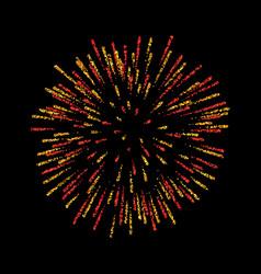 Firework isolated beautiful salute on black vector