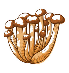 honey agaric mushrooms icon parasitic forest vector image