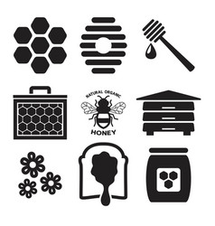 icons bees and honey vector image