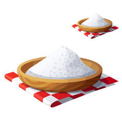 Salt isolated on white background detailed vector