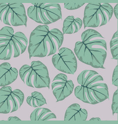 Seamless pattern of green leaves monstera vector