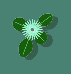 paper sticker on stylish background plant bellis vector image vector image