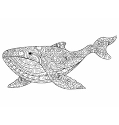 Whale coloring for adults vector image vector image