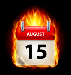 Fifteenth august in calendar burning icon on vector