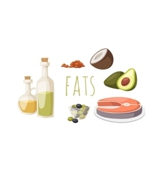 Food fats good high in protein isolated on white vector image