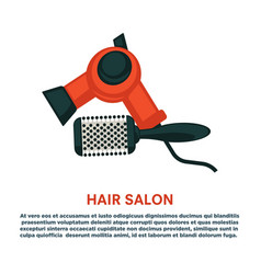 hair styling woman hairdresser dryer hairbrush vector image vector image