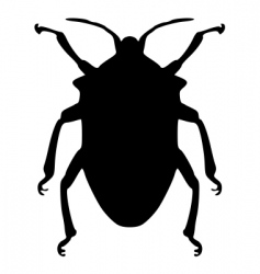true bug silhouette vector image
